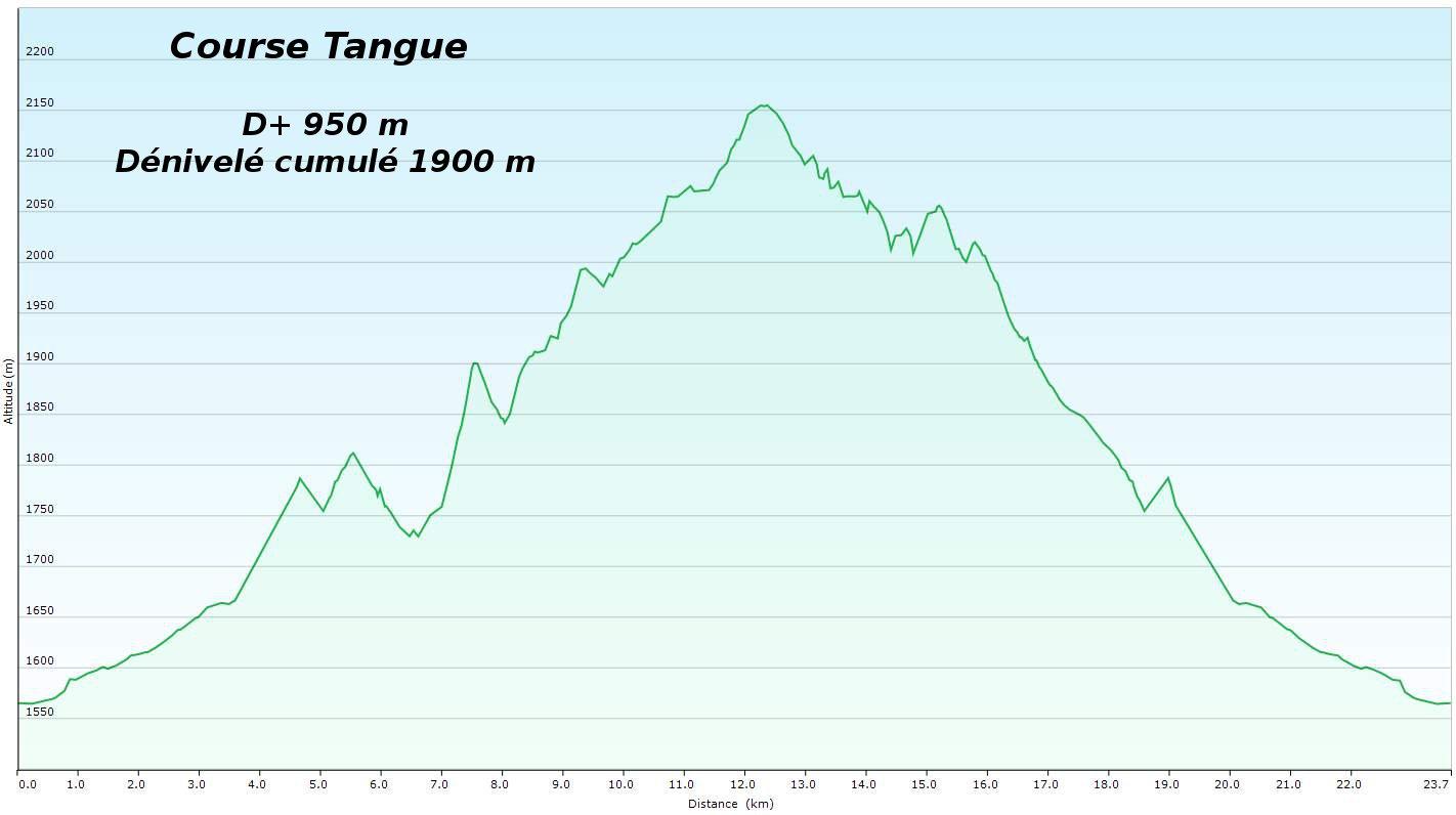 Profil Tangue